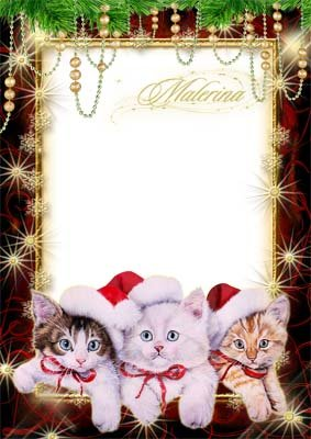 Новогодняя  рамка  для photoshop - Три котенка