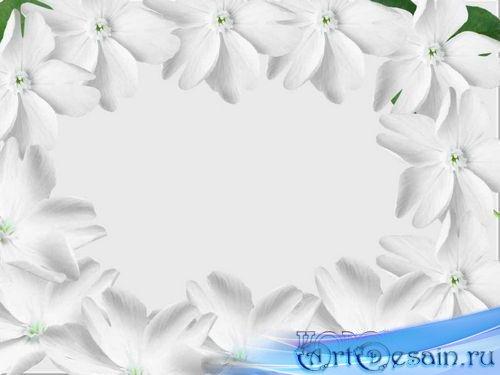 Рамка для фотошопа - Белые цветы