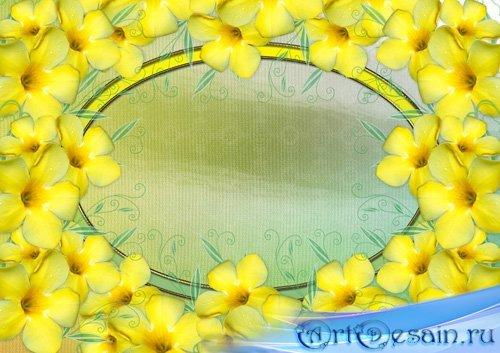 Рамка для фотошопа - Желтые цветы