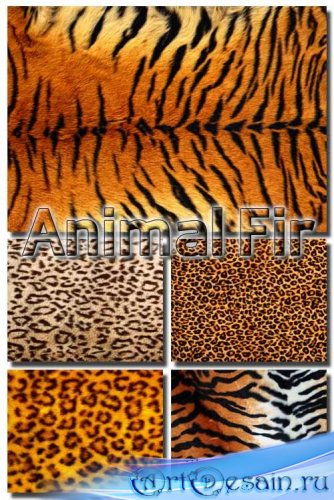 Текстуры - Мех животных