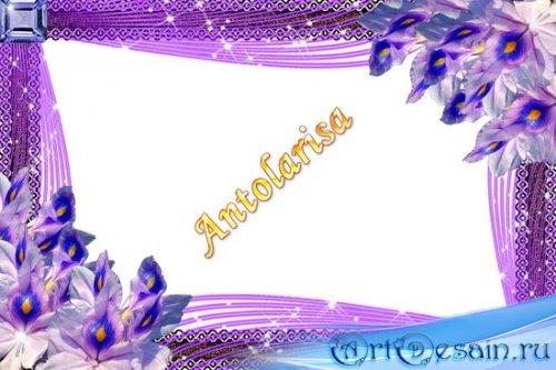 Красивая фиолетовая рамочка