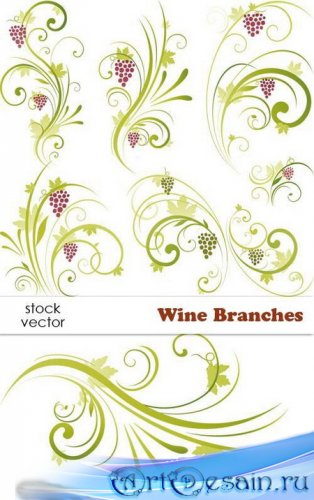 Vectors - Wine Branches