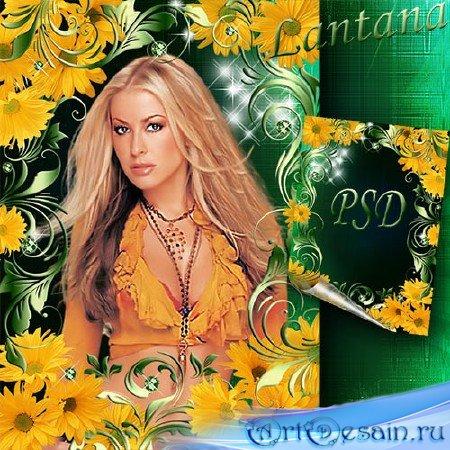 Рамка для фото - Желтые ромашки
