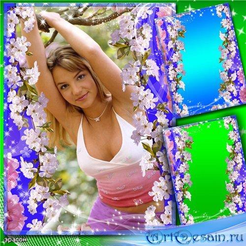 Цветочная рамка для фотошопа – Весенний цвет