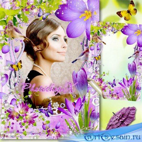 Цветочная рамка для Photoshop – Цветение крокусов под песнь птиц