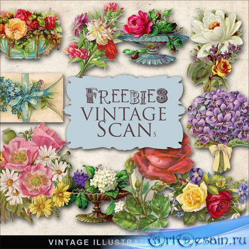 Scrap-kit - Vintage Flowers Illustrations #2