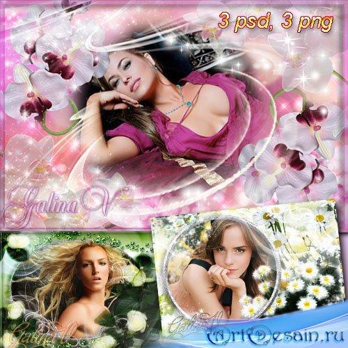 Рамки для фото - Цветочный рай: ромашки, орхидеи и розы