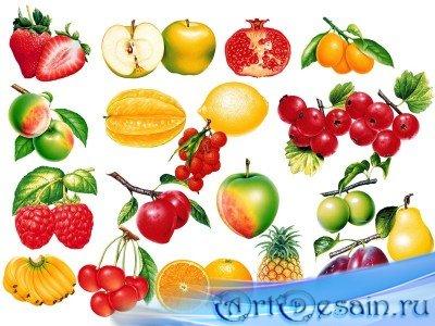 Psd исходники для photoshop фрукты