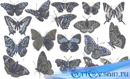 Кисти для фотошопа - Бабочки