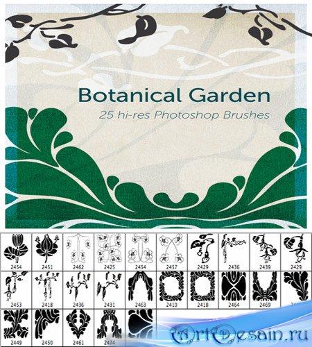 Кисти ботанический сад