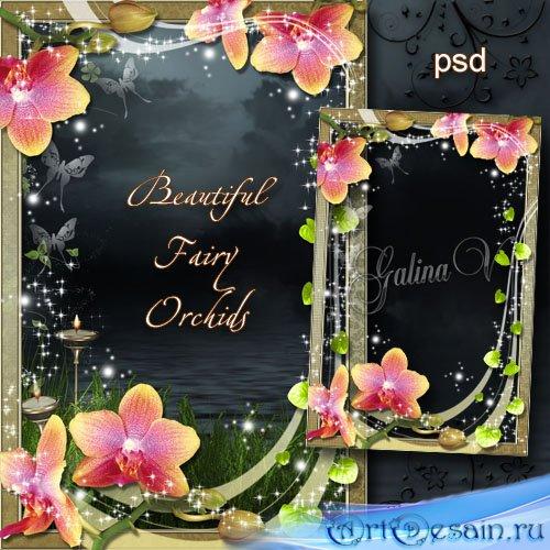 Цветочная рамка - Сказочная красота орхидей