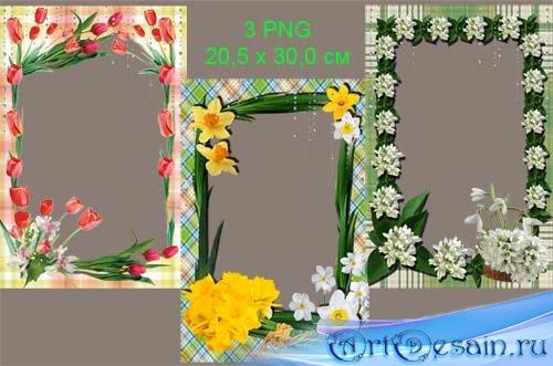 Набор из 3 фоторамочек – Весенние цветы