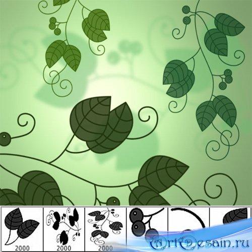 Красивое листья