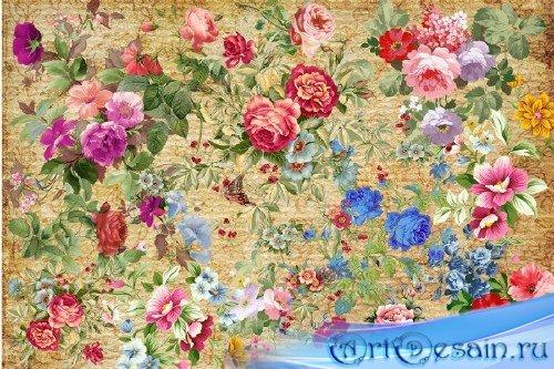 Клипарт - Винтажные букеты роз