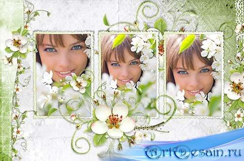 Нежная рамка для трех фото Цветение весны