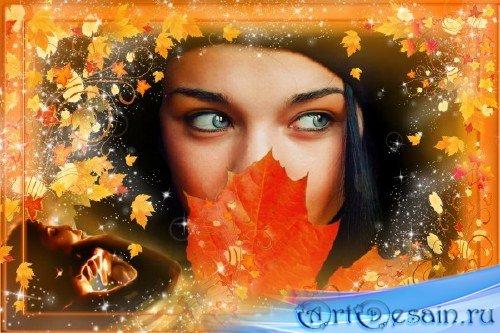 Фототамка - Золотая листва