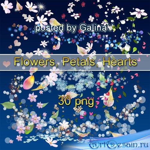 Клипарт PNG Россыпь: цветы, лепестки, сердечки