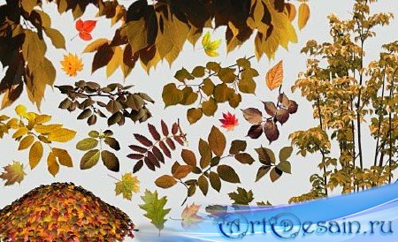 Клипарт - Осенний листопад