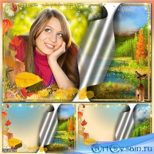 Рамка для фотошопа – Сказочная осень