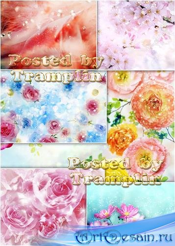 Фоны с цветами и блестками алмазов - Backgrounds with flowerses and spangle diamond