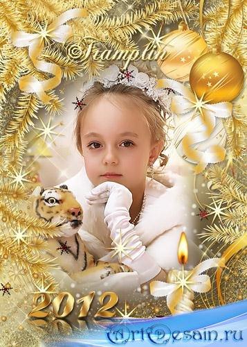 Золотая Новогодняя рамка 2012 – Мы стали на год старше, на год умнее, на го ...