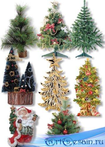 Клипарт PNG - Новогодние елки и сосны