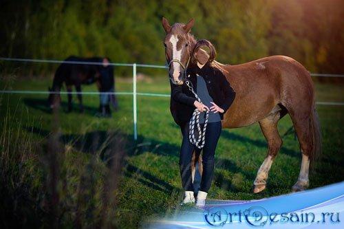 Шаблон для фотомонтажа - фото с лошадью