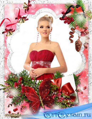 Набор новогодних рамок для фото - Снегири и новогодняя елочная композиция