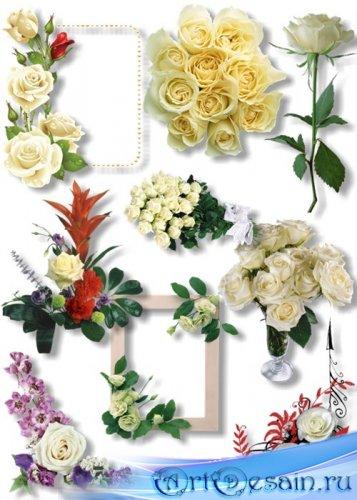 Клипарт - Цветочные букеты роз