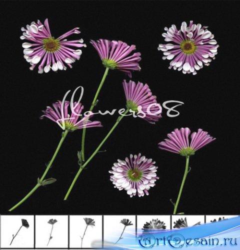 Дизайнерcкие цветочные кисти 7