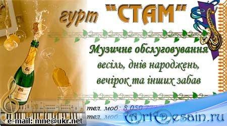 Шаблон визитки для музыканта, тамады