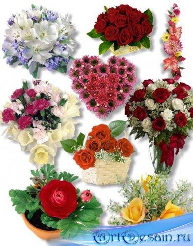 PNG Клипарт -  Прекрасные букеты цветов