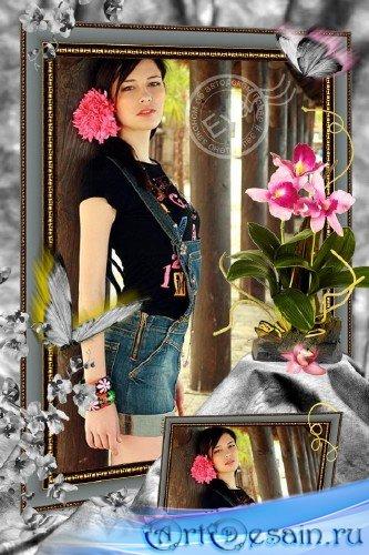 Фоторамка - Царственная грация орхидеи