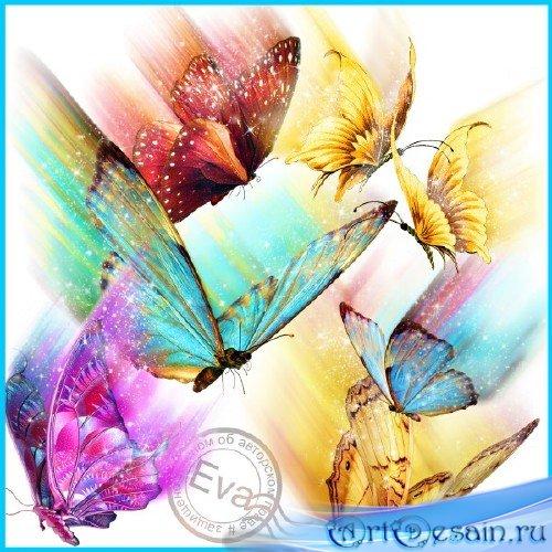 Клипарт - Порхающие бабочки