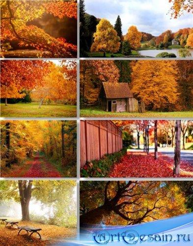 Клипарт - Осенние пейзажи