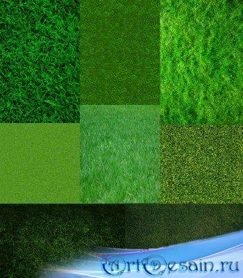 Текстура газона