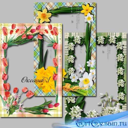Набор из трех рамок для фото - Первые весенние цветы