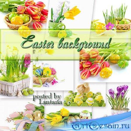 Растровый клипарт на белом фоне - С весной приходит праздник Cвятого Воскре ...