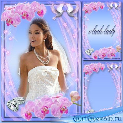 Свадебная рамка с розовыми орхидеями и кольцами - Любовь и голуби