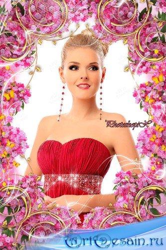 Рамка с цветами для Photoshop – Розовая гвоздика