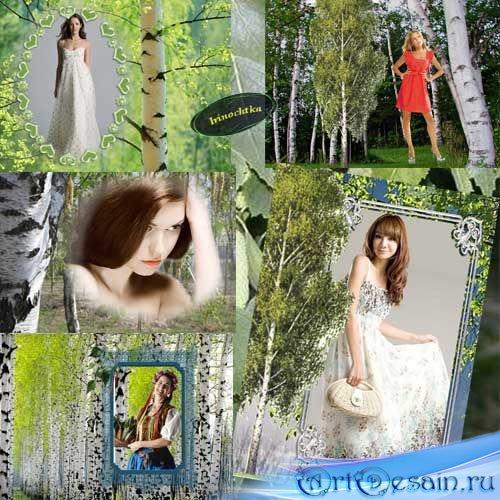 Набор рамочек для фото-Белая Берёза
