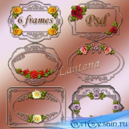 Рамки-вырезы для фотошопа - Серебро и розы
