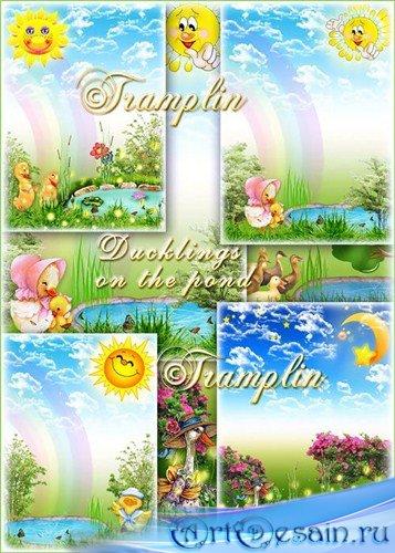 Красивые летние детские фоны -  Утята на пруду