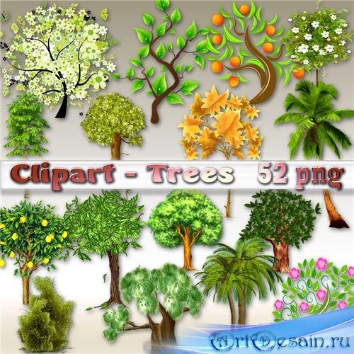 Клипарт- Деревья на прозрачном фоне