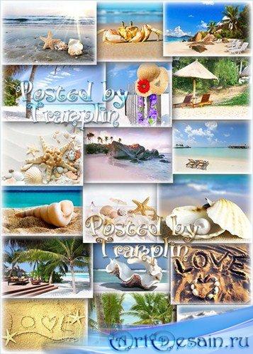 Лето, пляжи, песок, ракушки