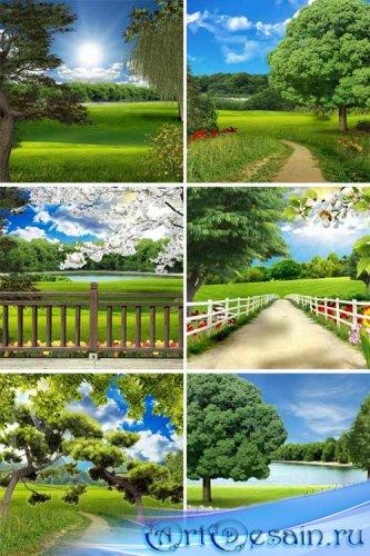 Природные фоны с деревьями