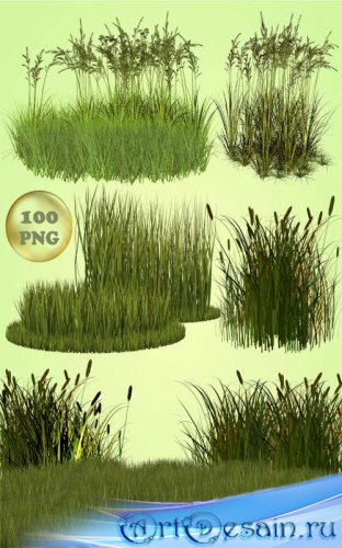 Клипарт - Разная трава