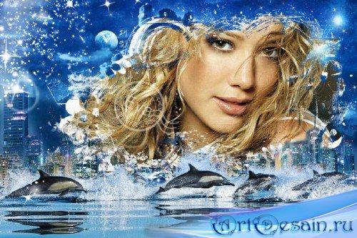 Рамка для фотошопа - Ночные дельфины