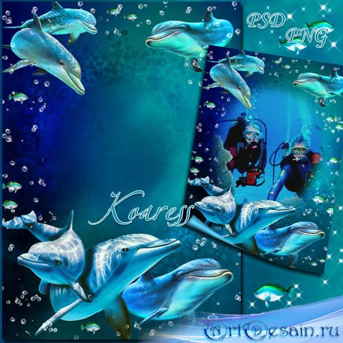 Рамка для фото - Дайвинг с дельфинами