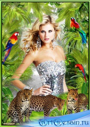 Рамка для фотошопа - Исключительно прекрасные и проворные кошки леопарды